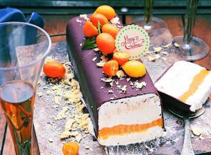 buche_glacee_aux_2_chocolats_mangue_agrumes_p_253